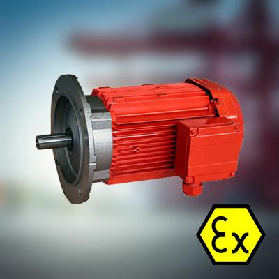 Atex Elektromotoren